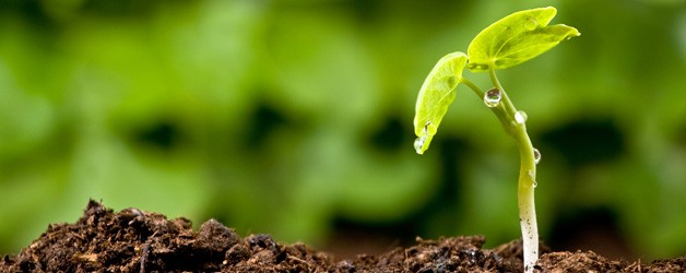 Church-Plant-Blog